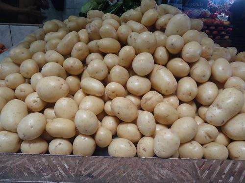 Abacate e batata puxam lista de produtos com preços em queda na Ceasa Cariri