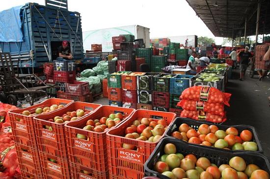 Boas safras fazem o preço do tomate cair 28,57% na Ceasa-CE