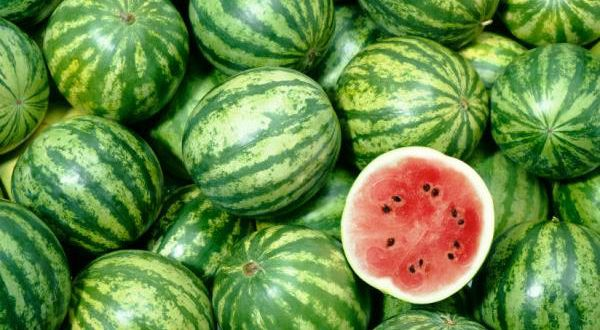 Semana na Ceasa-CE começa com preços em queda para a melancia, laranja e tomate