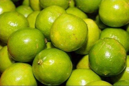 Preço do limão galego cai 31% na Ceasa-CE