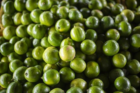 Ceasa Cariri registra queda de 48% no preço do limão Taiti