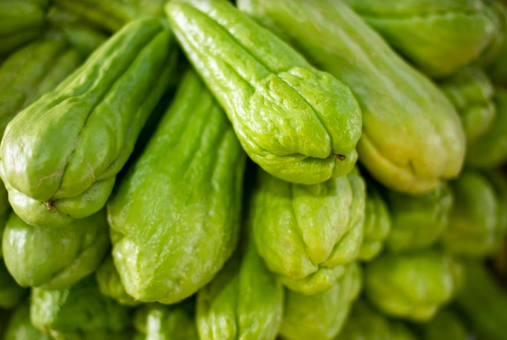 Preço do chuchu cai 33,33% na Ceasa de Tianguá