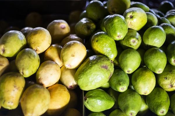 Abacate, goiaba e maracujá em oferta na Ceasa Maracanaú