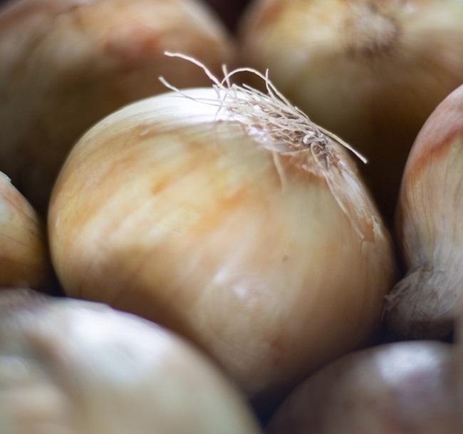 Preço da cebola pêra tem queda de 31,3% na Ceasa Cariri