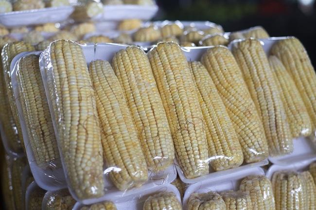 Espiga de milho verde está a R$ 0,60 na Ceasa em Maracanaú