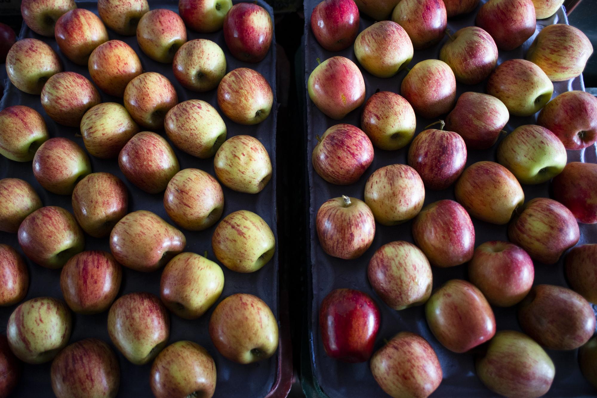 Semana começa com ofertas de frutas no entreposto da Ceasa no Cariri