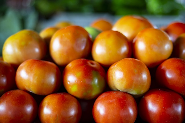 Preço do tomate cajá cai 56,3% na Ceasa Cariri
